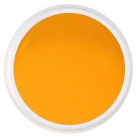 Color Gel Nº 13