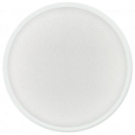 Acrylic Powder - Clear