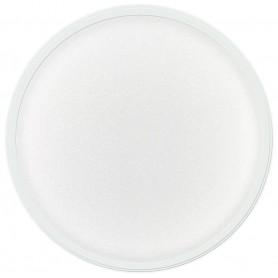 Acrylic Powder - French Extra White